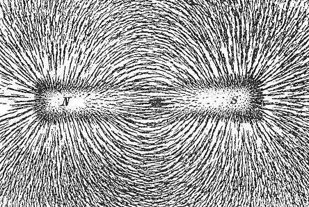 основной характеристикой магнитного поля
