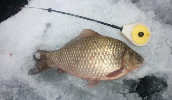 Зимняя рыбалка. Версия для печати.