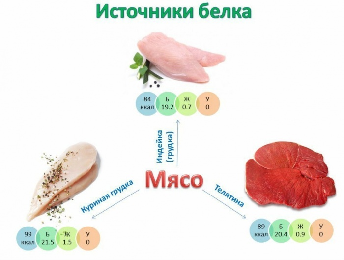 Protein_source